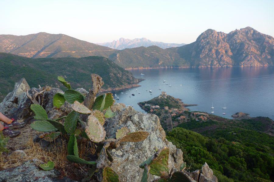 Croisière Corse : circuit Nord